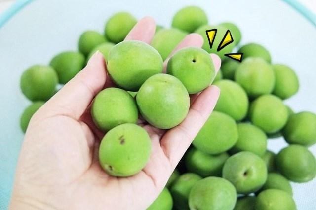 매실효능 생활건강 식중독에좋은음식