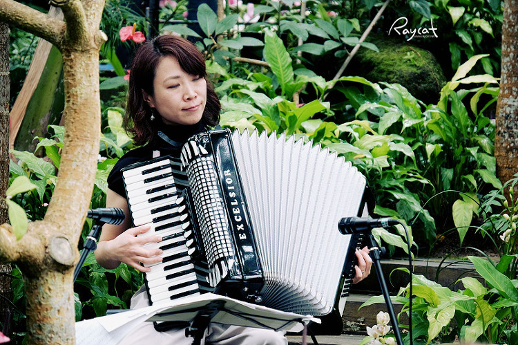 온실 아코디언 연주자