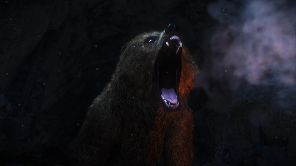 곰 등장!
