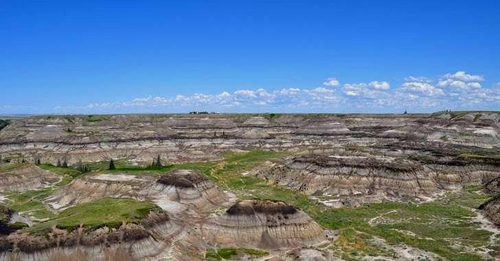 세계 최대 공룡 주립 공원입니다
