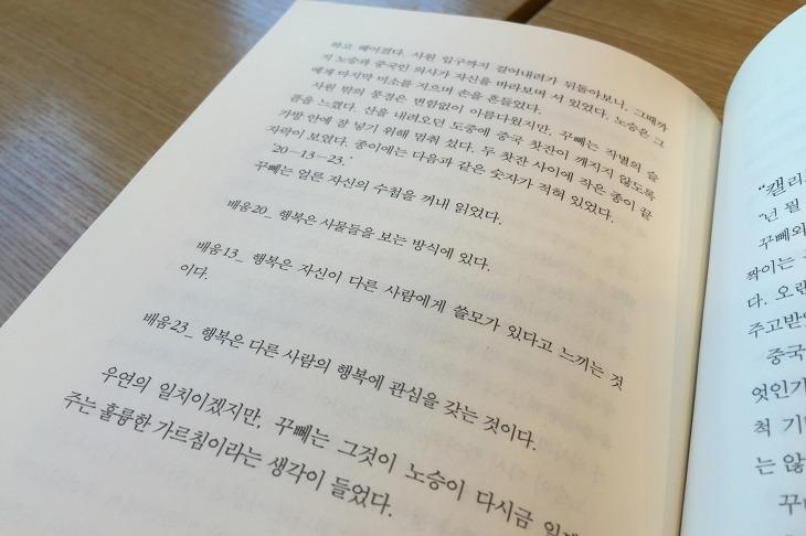 꾸뻬 씨의 행복 여행 책리뷰 독후감 프랑수아 를로르 지음