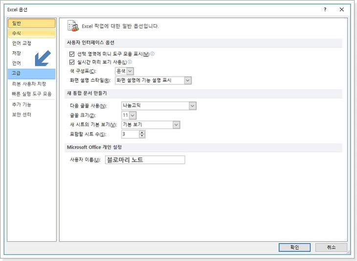 마이크로소프트 엑셀 2010 고급 옵션