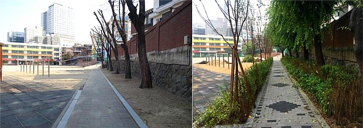 노량진초등학교 학교숲 등교길