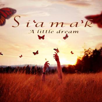 Siamak sarmadian [2014, a Little dream]