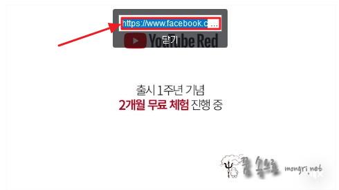 페이스북 동영상 주소