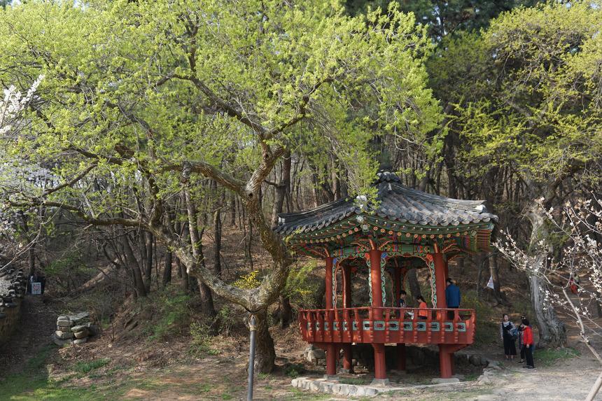 대전여행명소 우암사적공원