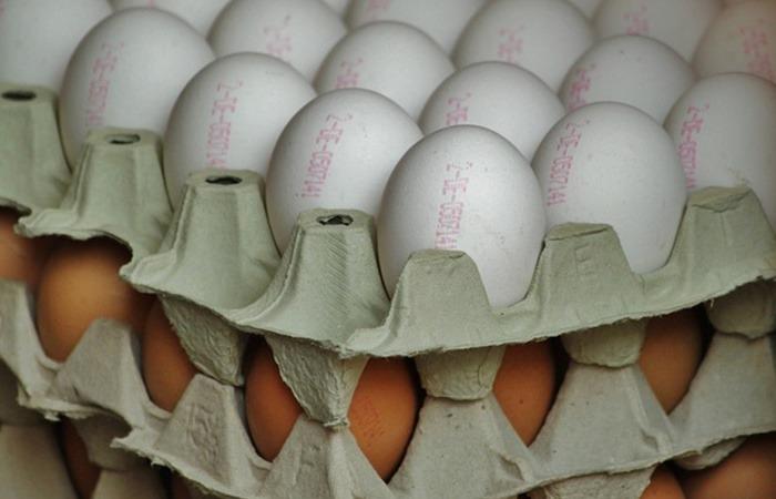 사진: 달걀 윗 부분에 찍힌 생산지와 숫자코드. 이 사진은 외국의 경우이고, 한국은 한글이 들어가기도 한다. 살충제 계란을 먹으면 생기는 부작용과 함께, 살충제 달걀 구별방법을 위한 계란 번호도 알아두자. [피프로닐이란? 비펜트린이란?]