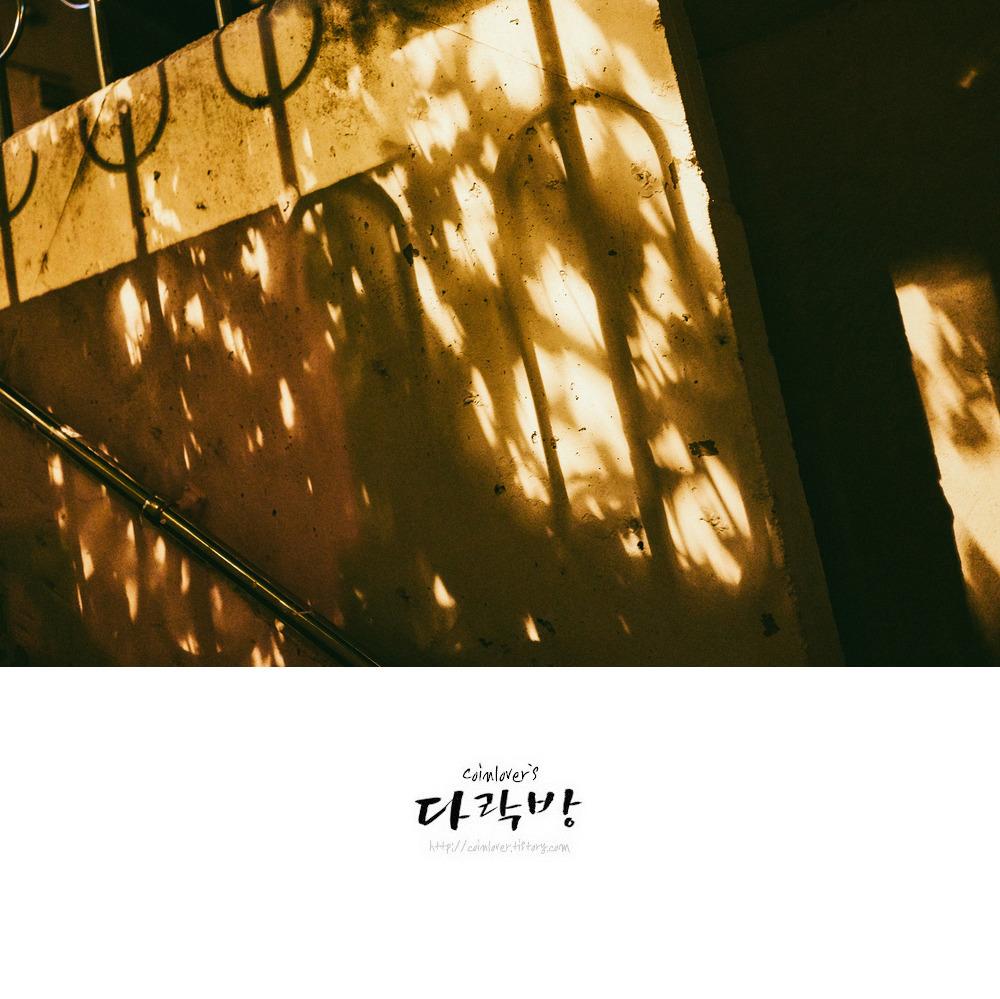 Jsut snap - 오후의 빛과 그림자