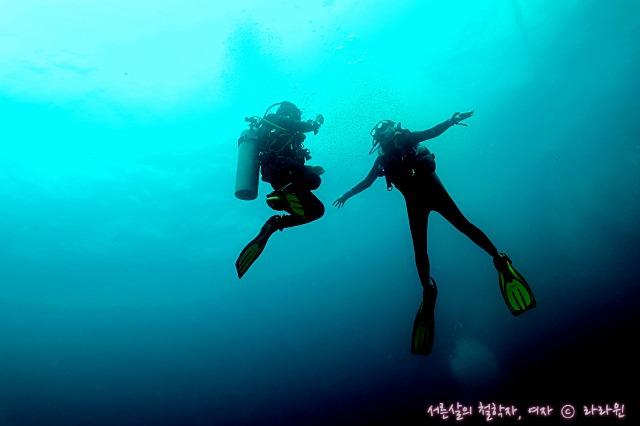 세부 해양공원 스쿠버다이빙