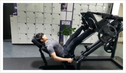 레그 프레스(Leg Press)