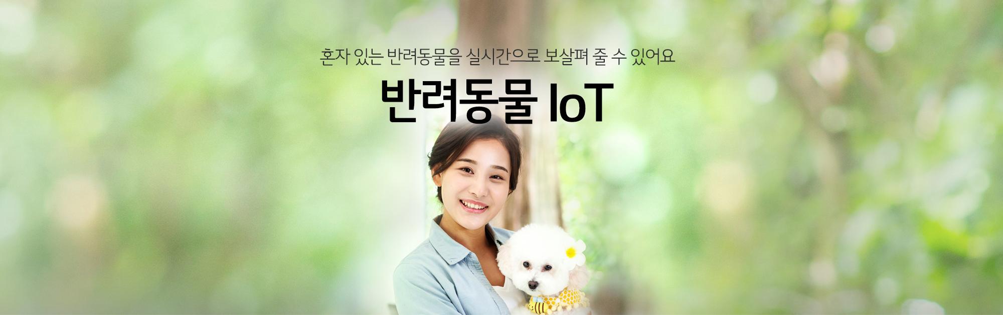 반려동물 IoT
