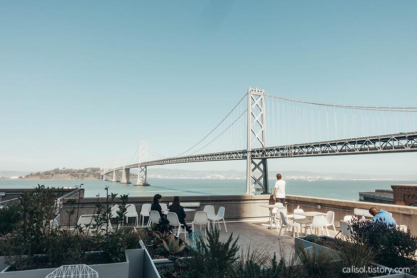 미국 생활 샌프란시스코 구글 회사 베이브릿지